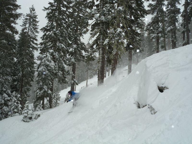 http://www.sierraattahoe.com/info/feature_foto.asp