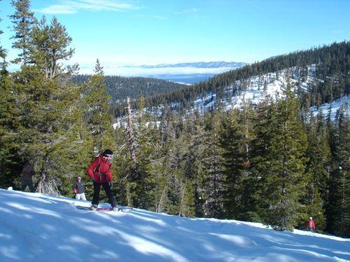 Sierra January11 029